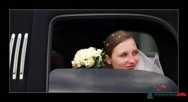 Фото 105343 в коллекции Свадебные фото - Фотограф Alexandr Osipov