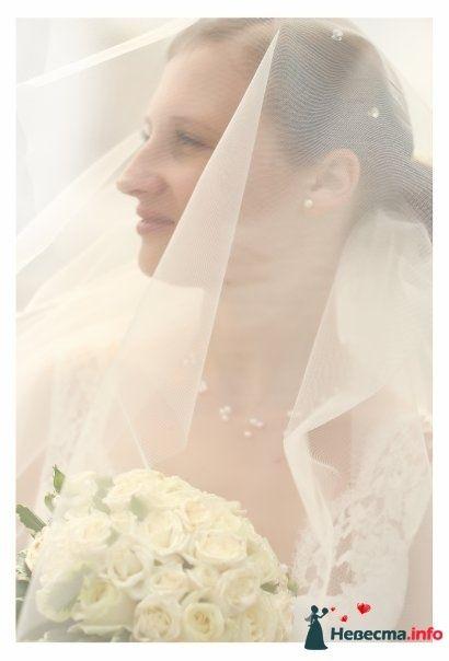 Фото 105346 в коллекции Свадебные фото