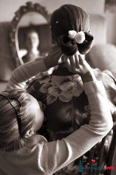 Фото 105351 в коллекции Свадебные фото - Фотограф Alexandr Osipov