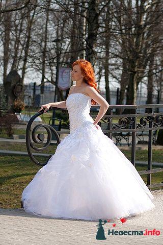 Фото 103148 в коллекции Свадебный фотограф Марина Шаранова  - Марина Шаранова