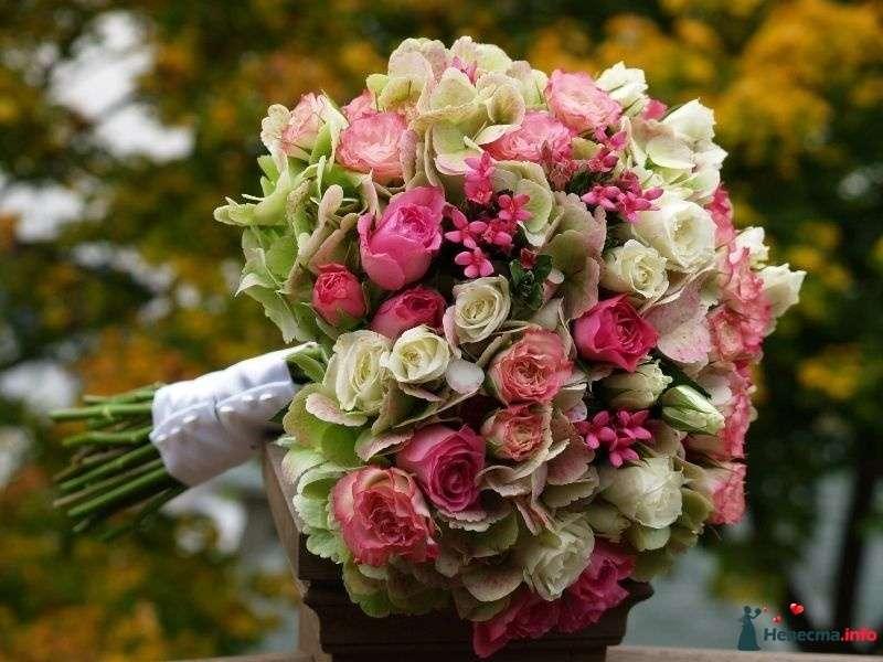 мой букет невесты из розовых роз и бувардии, бело-зеленых роз и гортензии - фото 104524 !!!nevesta!!!