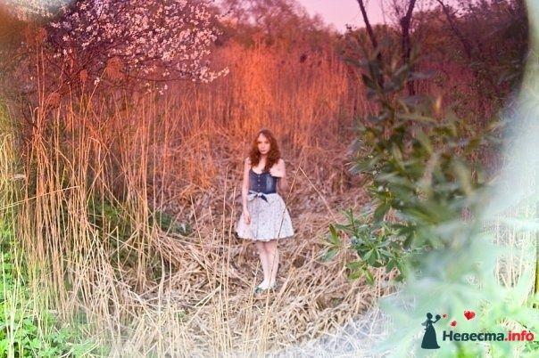 Фото 105396 в коллекции Пример моих работ - Анастасия Новикова - фотограф