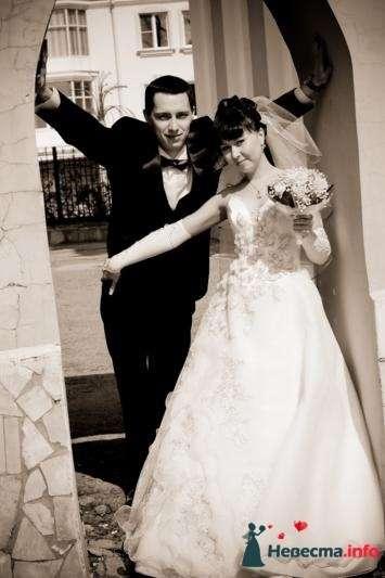 Фото 106861 в коллекции Свадебная фотография - Игорь Моисеев