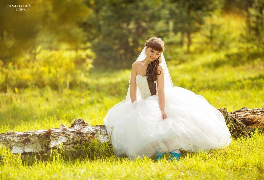 Фото 15293032 в коллекции Свадебное портфолио 2016 - Фотограф Елена Метёлкина