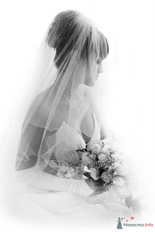 Фото 59181 в коллекции невеста по имени Дарья - Different