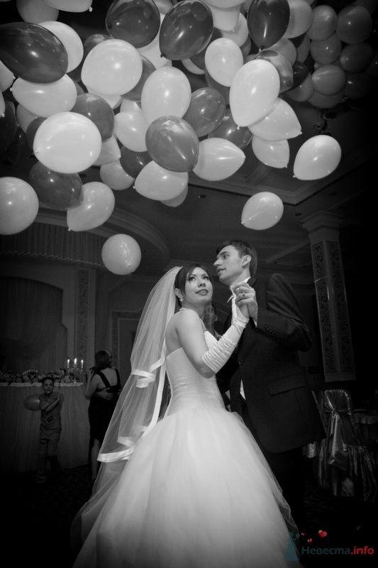 Фото 59549 в коллекции Невеста года - Теста