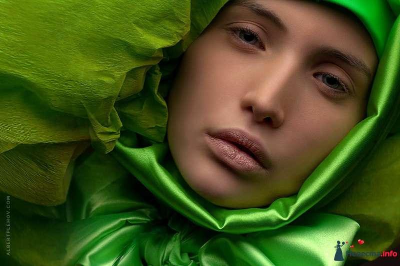Креативный образ невесты выражен в прическе из собранных волос с зеленной пышной шапкой, с естественным макияжем - фото 109944 Хабарова Марина - прическа и макияж на свадьбу