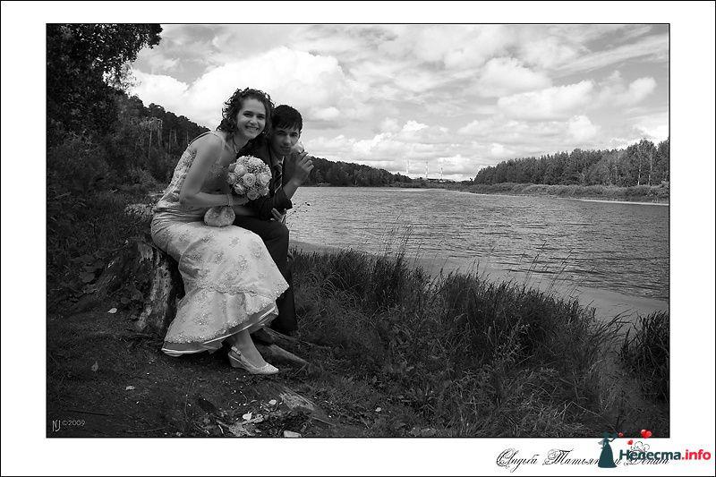 Свадебный фотограф Николай Сульженко - фото 109410 Свадебный фотограф Николай Сульженко