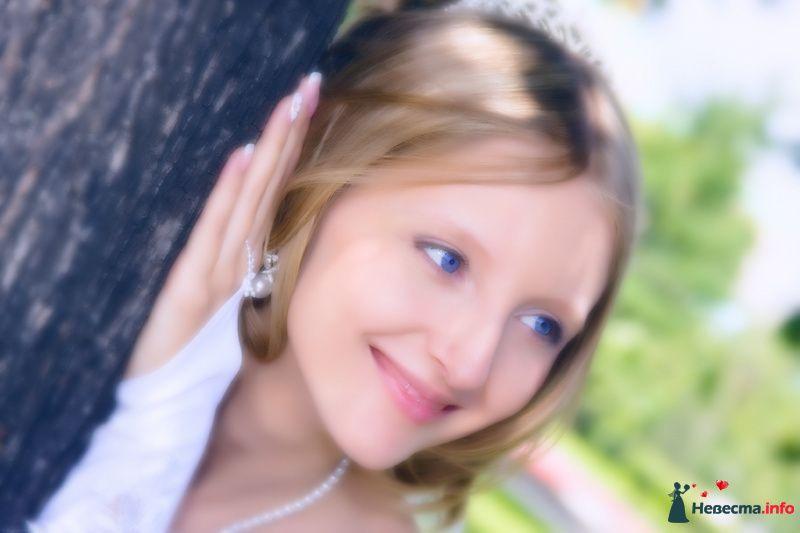 Фото 115600 в коллекции Свадебные фото - Фотограф Шумский Николай