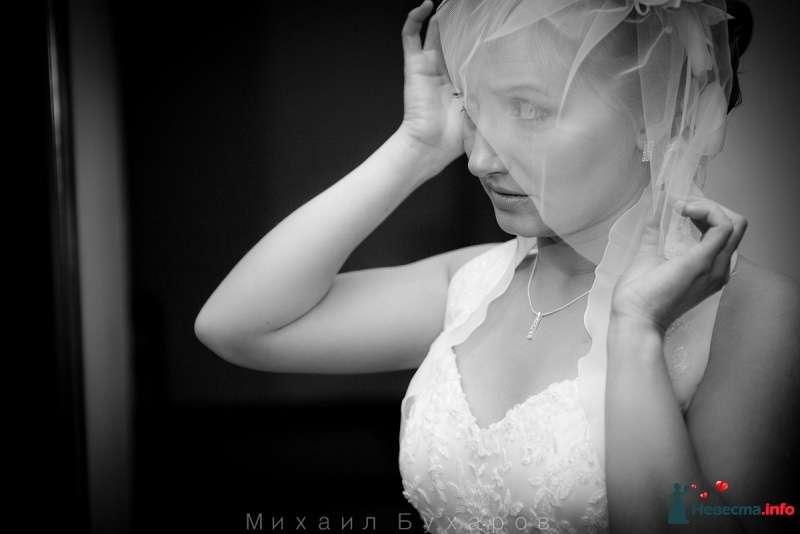 Фото 249593 в коллекции Wedding - Trofimovtv - видеосъемка