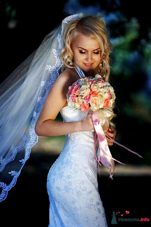 """Фото 111260 в коллекции Мои фотографии - Свадебное агентство """"Свадьба твоей мечты"""""""