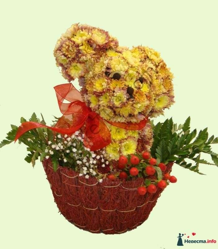 """Дружок - фото 112289 """"Цветочный бутик"""" - студия флористов"""