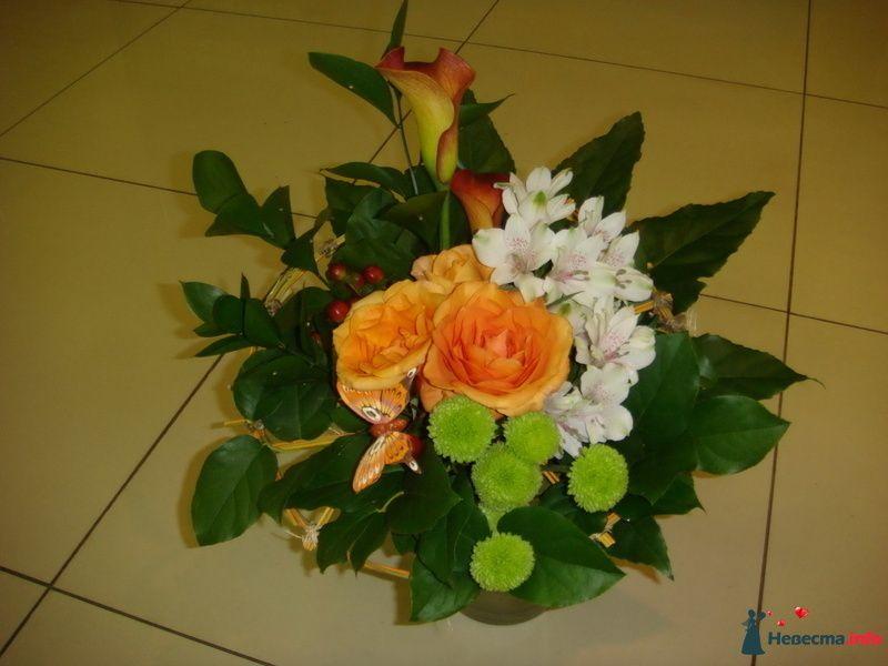 """Фото 116383 в коллекции Мои фотографии - """"Цветочный бутик"""" - студия флористов"""