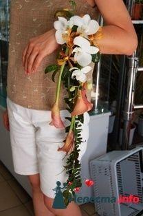 """Фото 118737 в коллекции Для форума - """"Цветочный бутик"""" - студия флористов"""