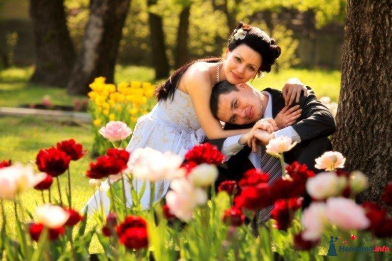 про любовь - фото 112207 Веденей