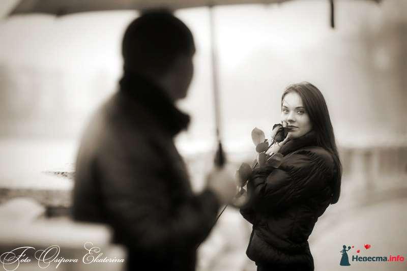 Оля и Коля 2:  Love Story - фото 112887 18051983