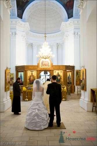 Фото 9392 в коллекции Алексей и Женя - Свадебный фотограф Ерофей Петухов