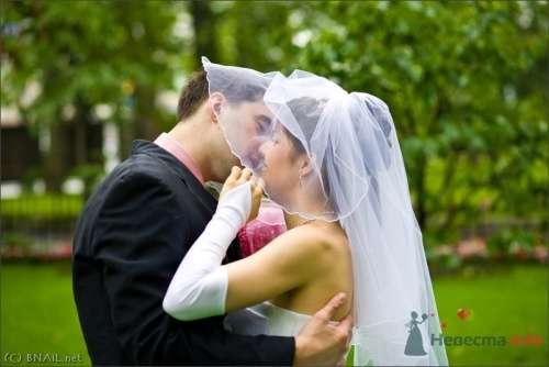 Фото 9395 в коллекции Алексей и Женя - Свадебный фотограф Ерофей Петухов