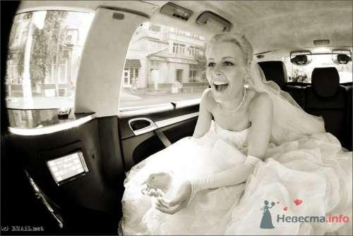 Фото 9461 в коллекции Саша и Катя - Свадебный фотограф Ерофей Петухов