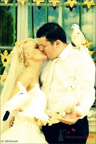 Фото 9466 в коллекции Саша и Катя - Свадебный фотограф Ерофей Петухов