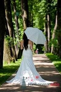 Фото 10311 в коллекции Райские мгновения свадьбы - FAMILY исключительно свадебное агентство