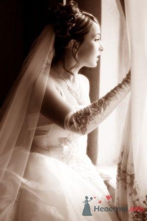 Фото 13564 в коллекции Мои фотографии - Невеста01