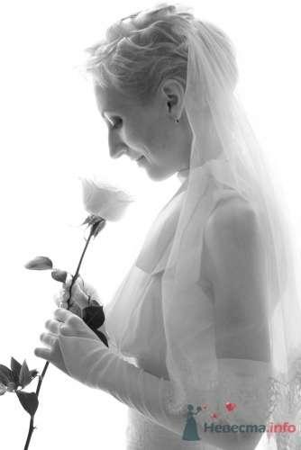 Фото 13568 в коллекции Мои фотографии - Невеста01
