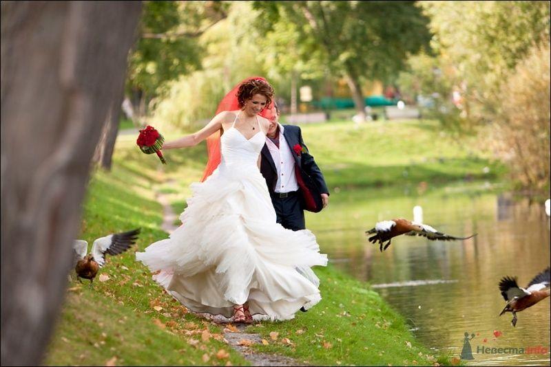 Жених и невеста, взявшись за руки, бегут вдоль озера