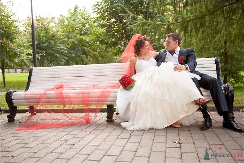 Жених и невеста стоят, прислонившись друг к другу, на скамейке - фото 53887 Tanuha