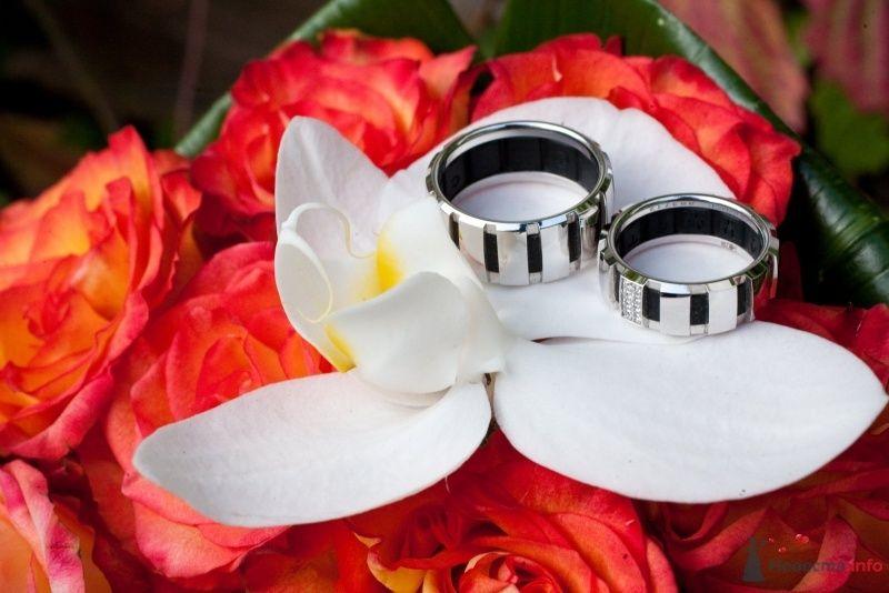 Обручальные кольца из белого золота с черными вкраплениями на фоне - фото 54486 Tanuha