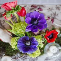 украшение стола, рустик, красно-синяя свадьба, ветки, мох на свадьбе