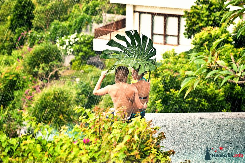 Фото 115308 в коллекции Свадьба на Бали - Ваш фотограф на Бали - Максим Коробейников