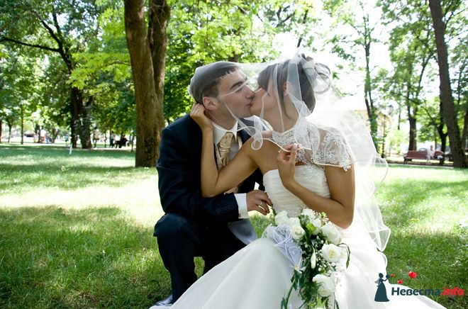 Фото 116315 в коллекции Свадебный альбом - Фотограф Комаров Дмитрий