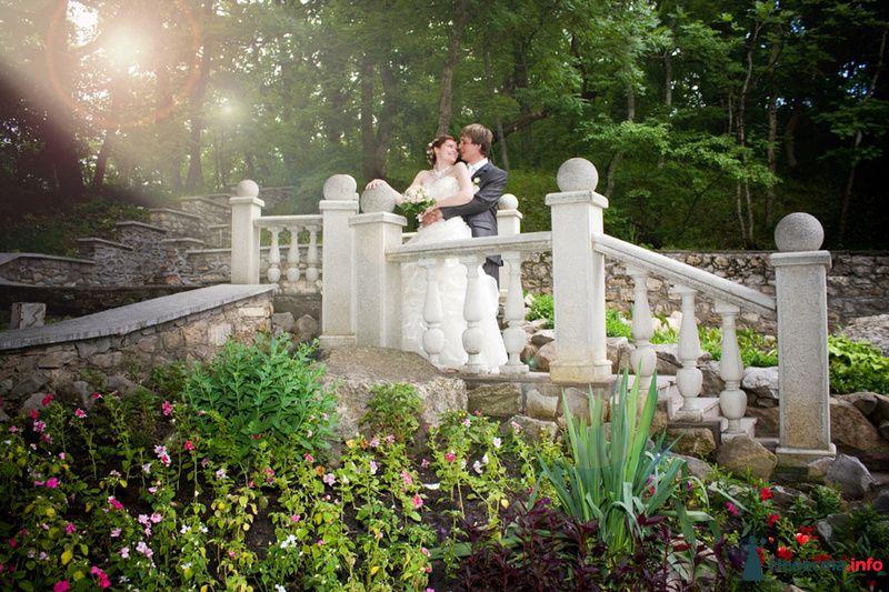 Фото 116399 в коллекции Свадебный альбом - Фотограф Комаров Дмитрий