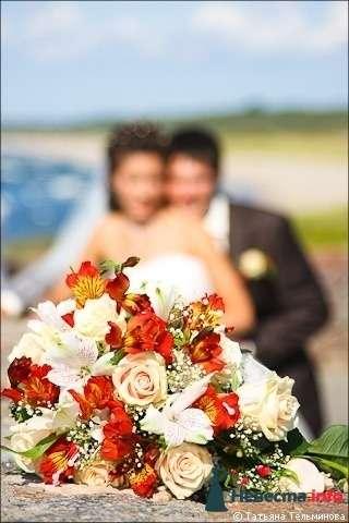 Свадебная фотосъёмка в Калининграде - фото 116977 Фотограф Татьяна Тельминова