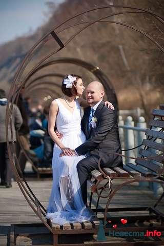Свадебная фотосъёмка в Калининграде - фото 116984 Фотограф Татьяна Тельминова