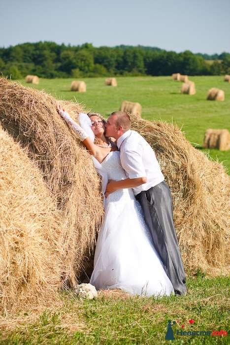 Свадебный фотограф в Калининграде - фото 123501 Фотограф Татьяна Тельминова