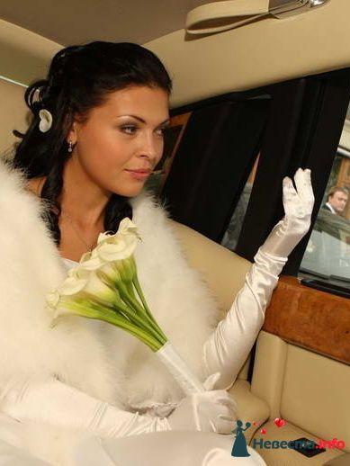 Елена - фото 125099 Свадебный стилист Татьяна Шатман