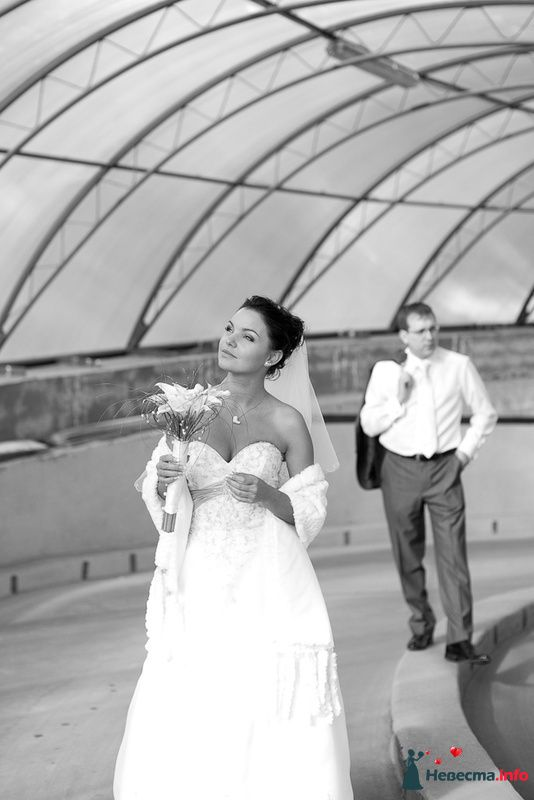 Фото 125811 в коллекции Wedding