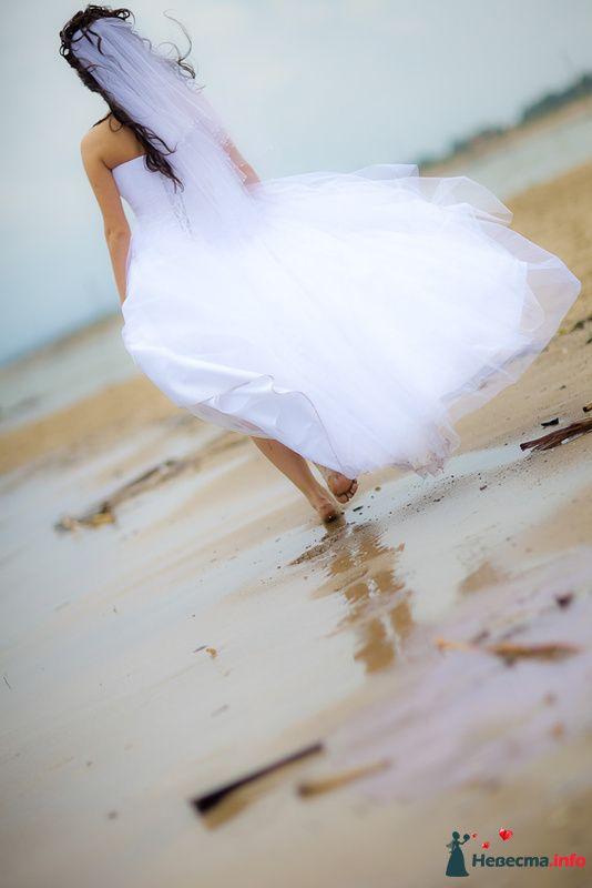 Фото 125813 в коллекции Wedding - Свадебный фотограф Денис Касецкий