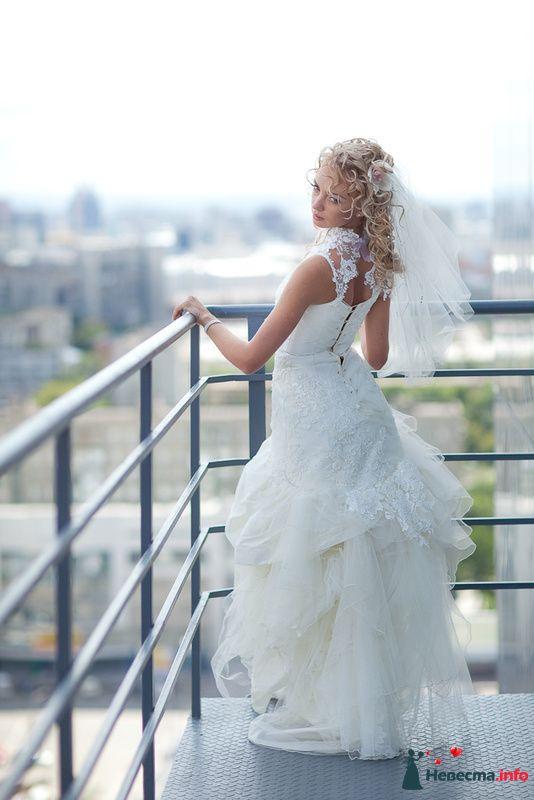 Фото 125818 в коллекции Wedding - Свадебный фотограф Денис Касецкий