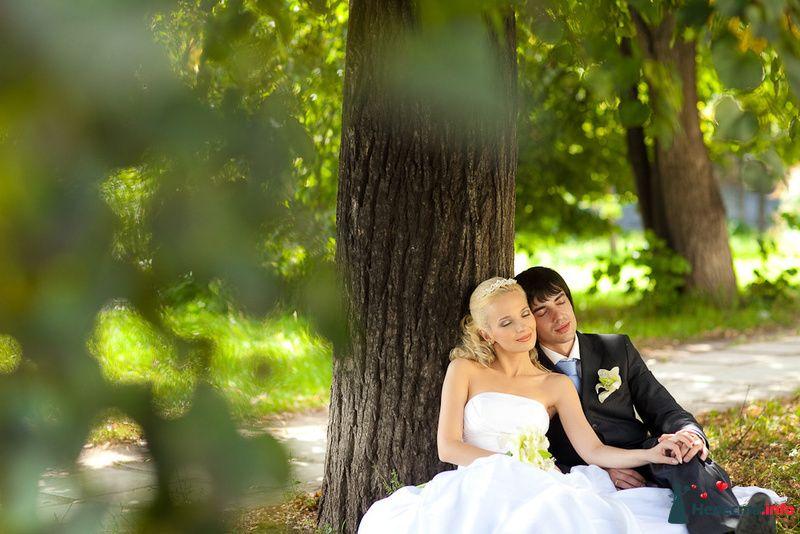 Фото 125831 в коллекции Wedding