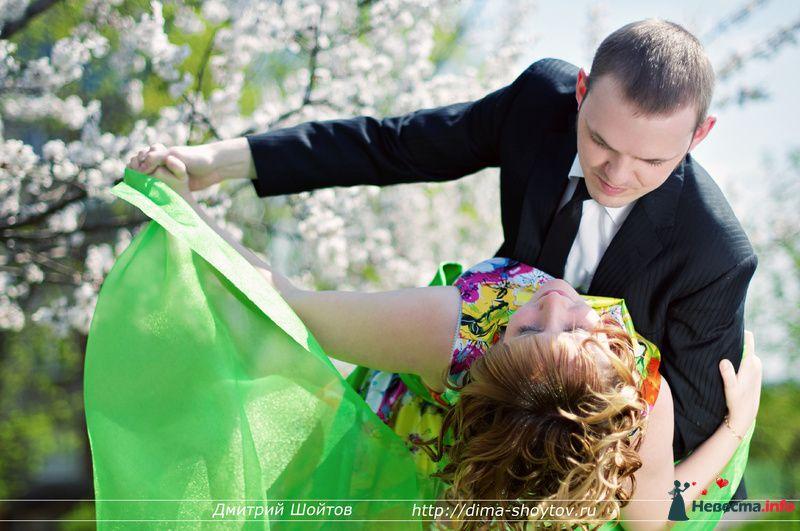 Фото 119701 в коллекции фотограф Дмитрий Шойтов - Дмитрий Шойтов