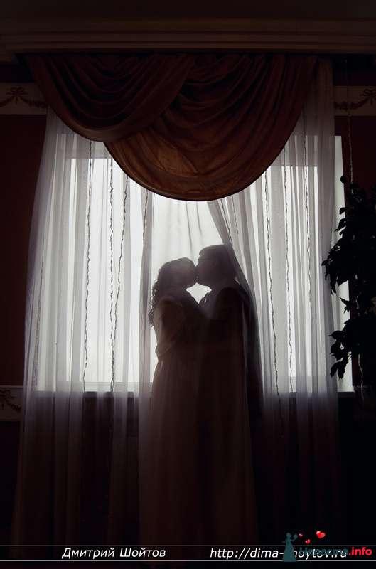Фото 119702 в коллекции фотограф Дмитрий Шойтов - Дмитрий Шойтов