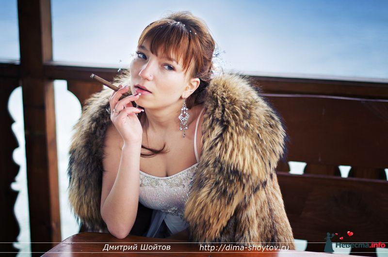 Фото 119713 в коллекции фотограф Дмитрий Шойтов - Дмитрий Шойтов