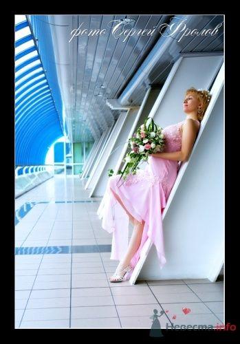 Фото 12206 в коллекции Мои фотографии - Сергей Фролов - свадебный фотограф
