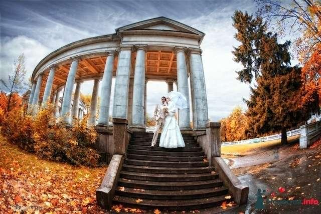 Фото 121071 в коллекции Мои фотографии - Невеста01