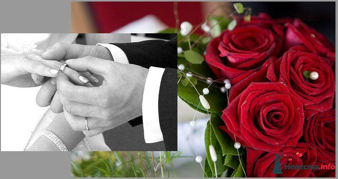"""Фото 121130 в коллекции Свадьба! - Праздичное агентство """"Golden Show"""""""