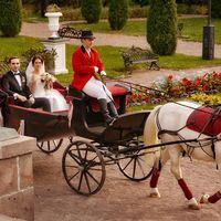 """Счастливые молодожены на свадьбе в парке-отеле """"Морозовка"""""""