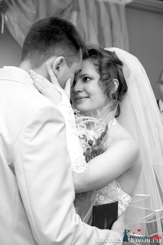 Эмоции в кадре - фото 122715 Профессиональный свадебный фотограф Елена Вольф (Барнаул)